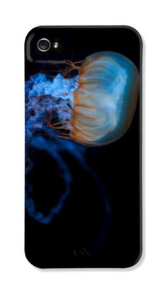 Blue Jellyfish – iPhone 5 case