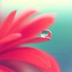crystal ball by : : p r e t t y p i x e l s : :, via Flickr