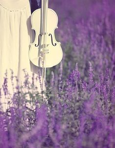 The vibration of the color lavender, plus the vibration of the violin combine to create heaven