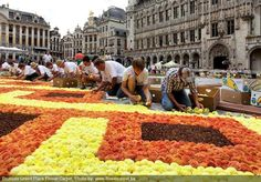 The Carpet of Flowers Festival - Grand Place, Brussels