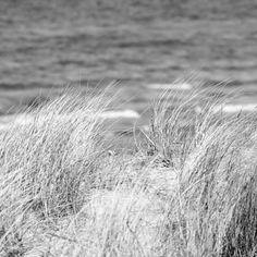 #Beach #Hornbaek #Mood