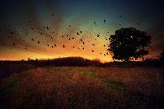 Amazing Landscape photography by Alexandru Popovski