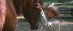 The Horse Whisperer (Robert Redford)