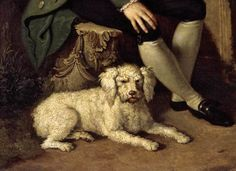 LAMPI, Johann Baptist I Portrait of Prince Nikolai Yusupov with a Dog 1780s