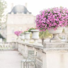 Happy new week! Here's a favorite spot in Jardin du Luxembourg that is so calming in the midst if the city. Thank you to everyone who entered the giveaway. Your comments brought me great joy. 💕 I was so touched that I doubled the number of winners! 😍They are @marcelv68 @dreaming_of_paris @whiteandfrenchbys @fromblushtofuchsia @red29starfish @richelley_marie Please message me your addresses and I'll get your print right out. Bonne semaine à tous!