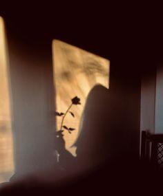@samrica.c #sunlight #shadow #shadows #aesthetic
