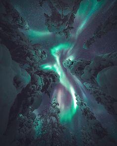 330 отметок «Нравится», 3 комментариев — #ArtOfGalaxies (@artofgalaxies) в Instagram: «Winter dragon Photo by @juusohd ➖➖➖➖➖➖➖➖➖➖➖➖➖➖➖ Tag #ArtOfGalaxies for a chance of a feature…»