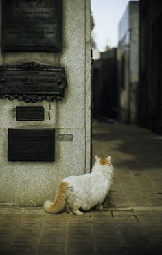 recoleta bend by concheven on Flickr