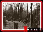 Box, Free, Outdoor, Outdoors, Snare Drum, Boxes, Outdoor Living, Garden