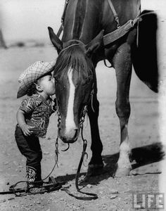 little cowboy and his horse