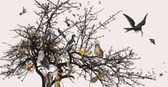 ZOO: behang 'vogels' afmetingen 5m x 2.6m / wallpaper 'birds' size 5m x 2.6m