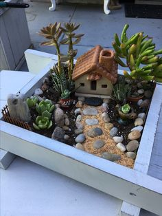 ✔ 53 do it yourself fairy garden ideas for kids 34 - Mini Garden Mini Cactus Garden, Fairy Garden Pots, Dish Garden, Succulent Gardening, Fairy Garden Houses, Garden Terrarium, Succulent Terrarium, Planting Succulents, Succulent Tree