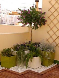 10 Best Pergola Designs, Ideas and Pictures of Pergolas – Top Soop Small Balcony Garden, Small Balcony Decor, Balcony Plants, Outdoor Balcony, House Plants Decor, Terrace Garden, Indoor Garden, Outdoor Gardens, Balcony Gardening