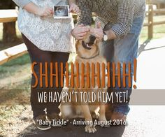 Announcing baby with a dog! New baby announcement!