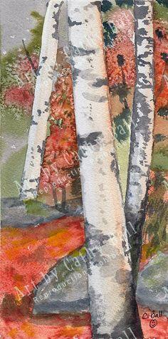 """Fall Birches - 4.75"""" x 9.75"""""""