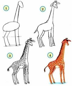 How to Draw Zoo Animals Easily Art Drawings For Kids, Drawing For Kids, Cartoon Drawings, Easy Drawings, Learn Drawing, Animal Sketches, Animal Drawings, Drawing Animals, Toddler Drawing