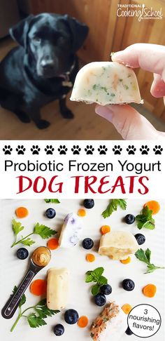 Dog treats sold in supermarkets or animal shops tend to be expensive and filled with different additives and preservatives which would definitely not benefit your pet dog and you pocket in the long run. Puppy Treats, Diy Dog Treats, Homemade Dog Treats, Healthy Dog Treats, Dog Biscuit Recipes, Dog Treat Recipes, Dog Food Recipes, Dog Breakfast, Frozen Dog Treats