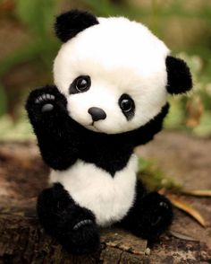 panda Stacy by Evgeniya and Igor Krasnov Cute Panda Baby, Baby Animals Super Cute, Baby Panda Bears, Cute Stuffed Animals, Cute Little Animals, Cute Funny Animals, Baby Animals Pictures, Cute Animal Pictures, Felt Animals