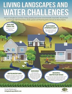 Share this infographic to help your clients in drought-prone areas plan an environmentally friendly landscaping project.
