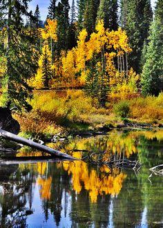 Grand Mesa, Colorado; photo by H. Bell