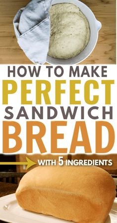 Homemade Sandwich Bread Easy homemade sandwich bread recipe that's nearly FOOLPROOF and the best I've ever tried.Easy homemade sandwich bread recipe that's nearly FOOLPROOF and the best I've ever tried. Homemade Sandwich Bread, Sandwich Bread Recipes, Sandwich Bar, Bread Machine Recipes, Homemade Breads, Pan Cetogénico, Pain Keto, Roast Beef Sandwich, Sandwiches