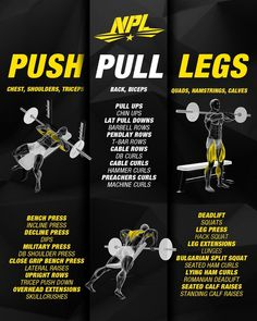 Let's cover some background knowledge first. It is a weightlifting training template that divides and conquers your muscles into groups where each group is trained separately — allowing other muscle. Push Pull Workout Routine, Push Pull Legs Workout, Push Workout, Workout Splits, Gym Workout Chart, Workout Routine For Men, Gym Workout Tips, Workout Schedule, Weight Training Workouts