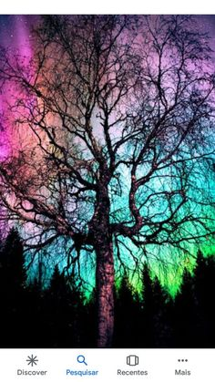 Aurora Treealis - Damn nice northern lights, so I decided to view them behind a tree. Beautiful Sky, Beautiful Landscapes, Beautiful Lights, Nature Wallpaper, Galaxy Wallpaper, Aurora Borealis, Nature Pictures, Belle Photo, Night Skies