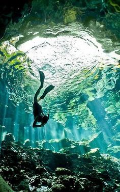Photo of the Day: Cenote diving, Peninsula de Yucatan, Mexico. Awesome.  www.facebook.com/UntravelledPathsLtd