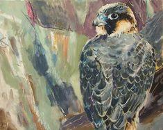 Brian Baxter: Juvenile Peregrine Peregrine, Birds, Painting, Art, Pilgrim, Art Background, Bird, Painting Art, Peregrine Falcon
