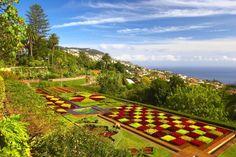 Madeira Botanical Garden http://www.travelandtransitions.com/destinations/destination-advice/europe/madeira-portugal/
