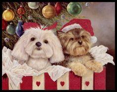 Shirley Deaville Dog Maltese Puppy Yorkshire Terrier Christmas Greeting Card 16   eBay