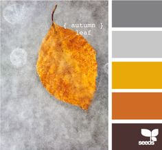 Autumn leaf, colors for a summer or fall wedding. Could be fun or modern depending on how you use the colors. Orange, yellow, gray.