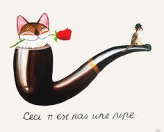 Catmasutra - This is not a pipe!