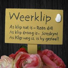 Weerklip Old Wood Signs, I Am An African, Rain Quotes, Afrikaans Quotes, Diy Garden Projects, Inspirational Message, No Time For Me, South Africa, Language