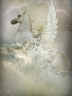 Yoveo by Lynne Davies | the unicorn's horn crackled lightening.