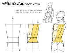 """타코작가 on Twitter: """"뒤에서 돌아볼 때 등의 중심축이 바뀌면서 팔이 붙은 옆면이 보인다… """" Body Reference Drawing, Anatomy Reference, Art Reference Poses, Body Drawing Tutorial, Sketches Tutorial, Anatomy Poses, Anatomy Art, Neko Girl, Human Anatomy Drawing"""