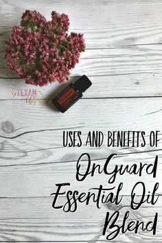 OnGuard Essential Oil Blend Uses and Benefits