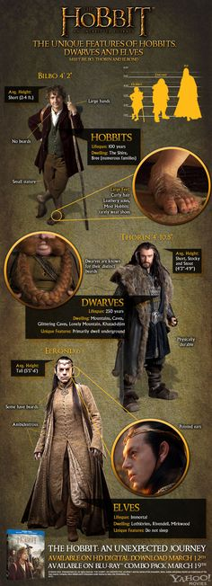 The physical differences between hobbits, dwarves, and elves.