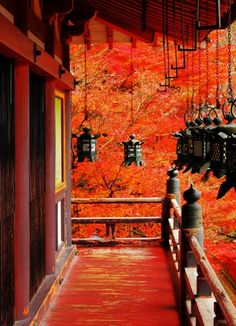 談山朱紅と Tanzan Shrine, Nara, Japan #AutumnLeaves