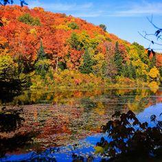 Autumn in the Almaguin Highlands.