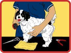 Dog Care Patch