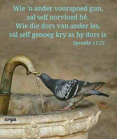 Wie 'n ander voorspoed gun, sal self oorvloed hê. Wie die dors van ander les, sal self genoeg kry as hy dors is Biblical Verses, Bible Verses Quotes, Scriptures, Afrikaanse Quotes, Thought For Today, Good Morning Inspirational Quotes, Daughters Of The King, Good Morning Wishes, Word Pictures