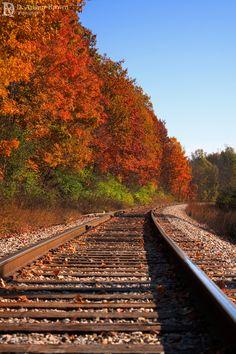 Fall colors over the railroad in Ann Arbor, Michigan