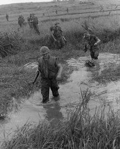 Marines patrolling through rice paddies with german shepherd scout dog. Military Working Dogs, Military Dogs, Military Art, Military History, Vietnam History, Vietnam War Photos, American War, American History, World Conflicts