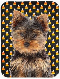 Candy Corn Halloween Yorkie Puppy / Yorkshire Terrier Mouse Pad, Hot Pad or Trivet KJ1216MP