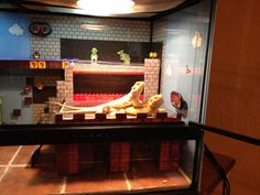 Closer view of my bearded dragons' enclosure.