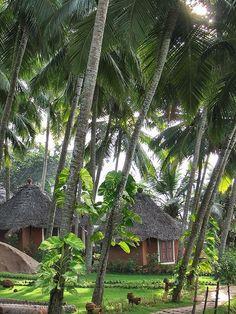 Kovalam beach hotels in kerala, India