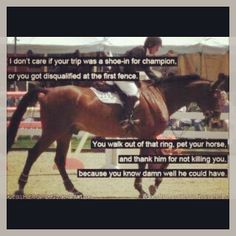 Thank your horse