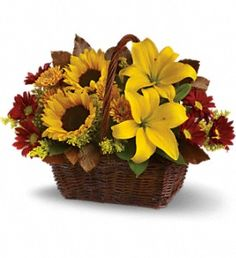 sunflowers and lilies arranged with mums and daisies in a wicker basket for Thanksgiving