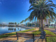 Downtown St. Petersburg, Florida